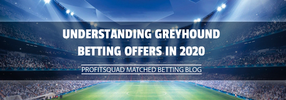 Understanding Greyhound Betting Offers in 2020
